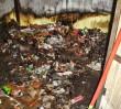 Biedronka się spaliła, ale jest otwarta!