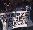 """""""Nieludzkie okrucieństwo"""". Cyrk bez zwierząt? Sejm zadecyduje"""