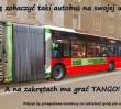 Petycja, by przegubowe autobusy na zakrętach grały jak akordeon