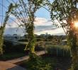 Ogród na BUW-ie otwarty od 1 kwietnia! [ZDJĘCIA]