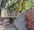 Ogród Botaniczny UW otwarty ostatni dzień!