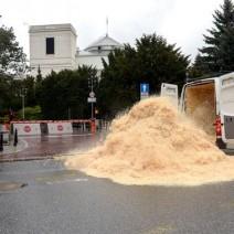 Wysypali trociny przed Sejmem