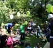 Rośliny, owady i miód - rodzinny festiwal edukacyjny