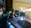 Przełomowe odkrycie! Ozimek volans - największy latający gad odnaleziony w Polsce [WIDEO]
