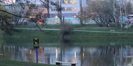 """Zwłoki w parku Skaryszewskim. """"Pływały w wodzie"""""""