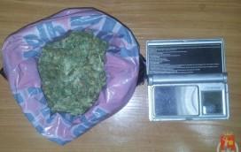 Miał sto porcji marihuany!