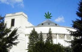 Skąd wziąć marihuanę w Warszawie?