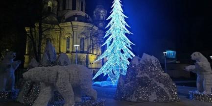 Iluminacja Praskiej Choinki