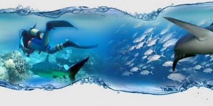 Podwodna Przygoda 2013