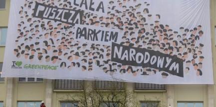 Greenpeace wywiesił baner na budynku Ministerstwa Środowiska. Szyszko komentuje