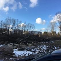 """Właściciel zagrodził działkę... wyciętymi drzewami. """"Zablokował ulicę"""""""