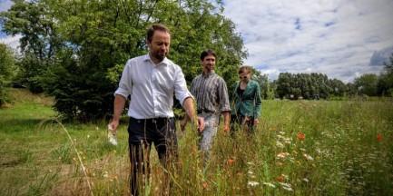 Zmiany nad Wisłą. Powstaną łąki z rodzimą roślinością